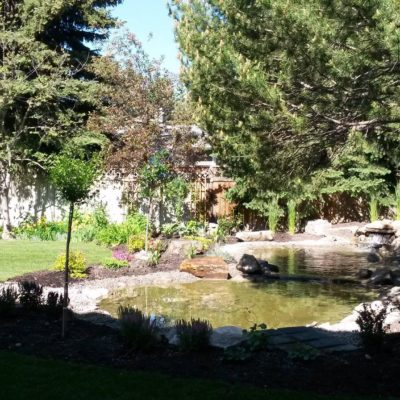 Final Backyard Garden Pond Design Stage 4 Before After by European Garden Design Calgary