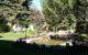 Final Backyard Garden Pond Design Stage 4 Before After by European Garden Design Calgary